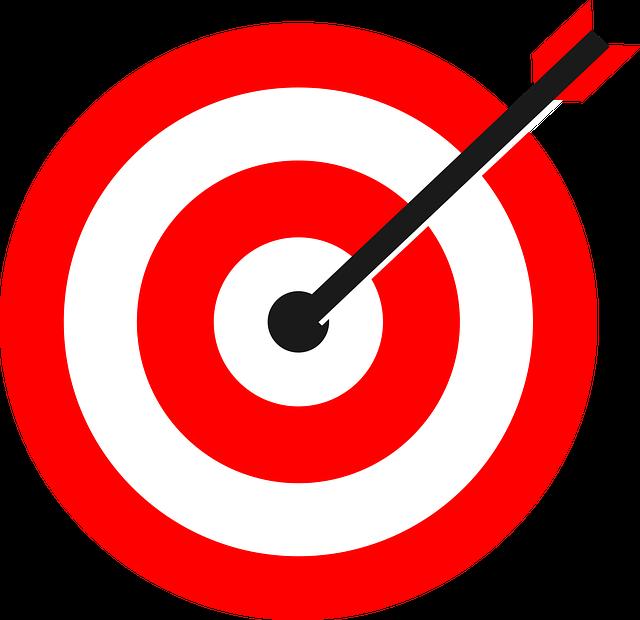 trouver une niche web rentable demande de la précision