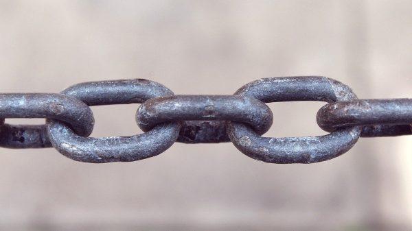 Netlinking en interne ou en agence spécialisée